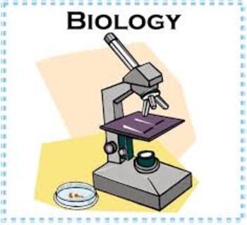Biology - Evolution of Multicellular Life: Part 1