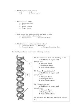 Biology Exam Semester One