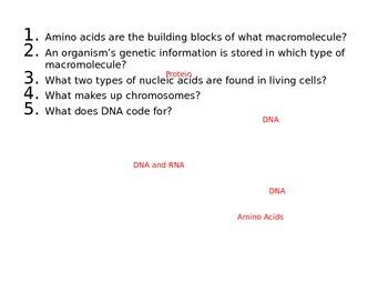 Biology Final Review Questions