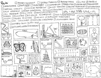 Biology Final Review in Pictures Coloring Sheet
