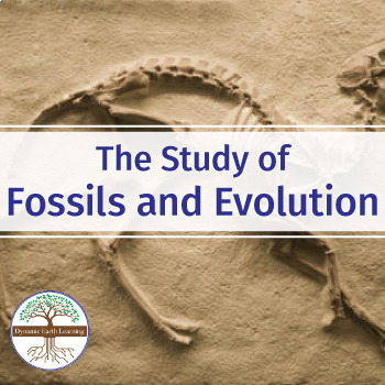 The Study of Fossils and Evolution - Biology Video Guide Worksheet