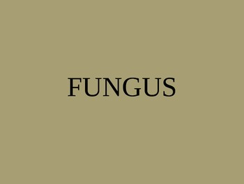 Biology: Fungus (Visually Adapted for ELL/ESL)