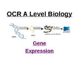 Biology - Gene expression