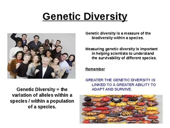 Biology - Genetic Diversity, Polymorphism and calculations.