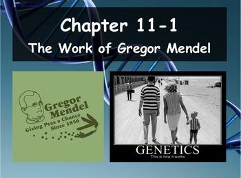 Biology - Genetics 11.1 The Work of Gregor Mendel PPT and ...