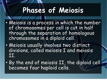 Biology - Genetics 11.4 Meiosis  Powerpoint and Guided Notes