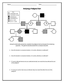 Biology! Genetics: Worksheets!