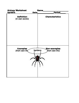 Biology Graphic Organizer Frayer Model Spiders