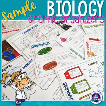Biology Graphic Organizers Growing Bundle FREE sampler