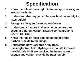 Biology - Haemoglobin & Oxygen Dissociation Curves.