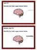 Biology Task Cards: Human Body Set 2
