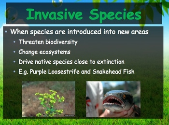 Biology - Human Impacts (6.3 Biodiversity Powerpoint and Guided Notes)