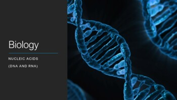 Biology I: Nucleic Acids, Protein Synthesis & Gene Mutatio