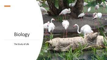 Biology I: Scientific Method and Characteristics of Life P