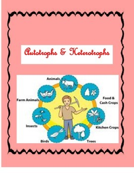 Interactive Notebook-Biology