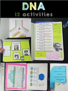Biology Interactive Notebook Activities - Bundle