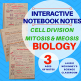 Biology Interactive Notebook - Mitosis & Meiosis Notes