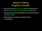 Biology! Animals: Invertebrates & Vertebrates