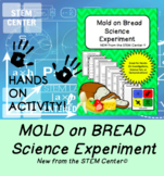 Science Experiment - Mold & Bread - Distance Learning Friendly