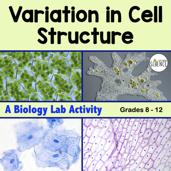 Biology Lab: Cell Structure and Function