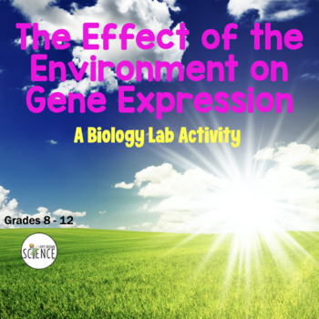 Genetics Lab: Effect Of Environment On Gene Expression