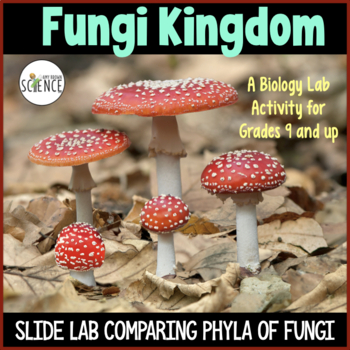 Biology Lab:  The Fungi