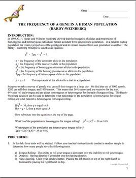 Biology Lab: The Hardy Weinberg Equation (Population Genetics)