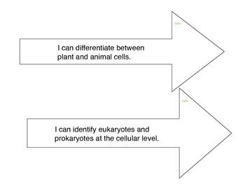Biology Learning Targets Cells
