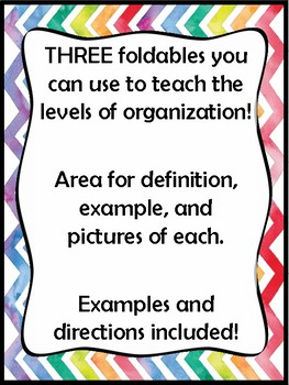 Biology Levels of Organization Foldable *INB*