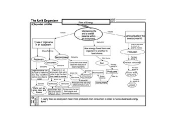Biology Life Science Flow Of Energy Unit Outline Graphic Organizer Reference