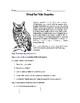 Virtual Owl Pellet INTERACTIVE Lab Activity!