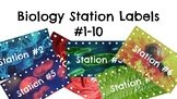 Biology/Life Science Stations Posters