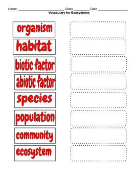 Biology / Life Science Vocabulary - Ecosystems