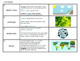 Biology/Living Environment Vocabulary Strips for Ecology Unit