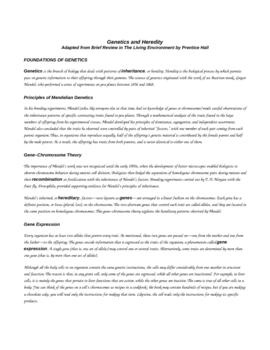 Biology MCAS Multiple Choice Practice - Genetics