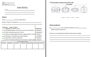 Cell Reproduction - Meiosis; Crossing Over Worksheet Included