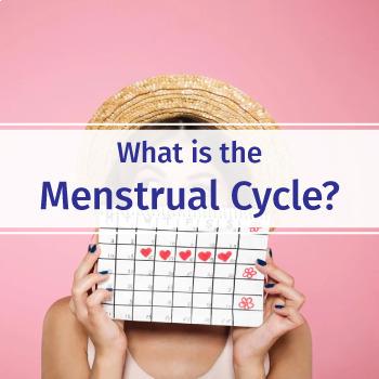 Biology-Menstrual Cycle: FuseSchool Biology Video Guide