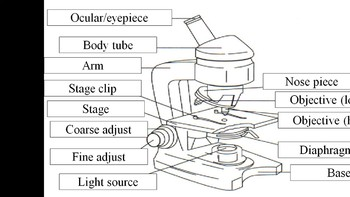 Biology Microscope (With review of ions and molecules)