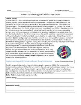 High School Biology Notes - DNA Testing, Genetic Engineering, Cloning