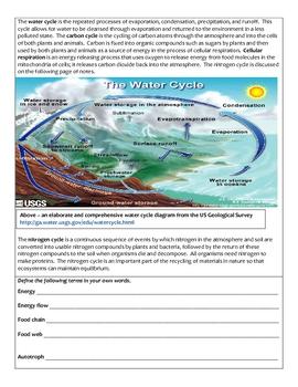 High School Biology Notes - Ecology