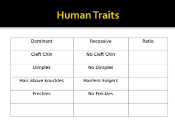 Biology Notes Fundamentals of Genetics