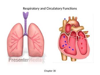 Biology - Organ Systems - Respiratory and Circulatory Functions