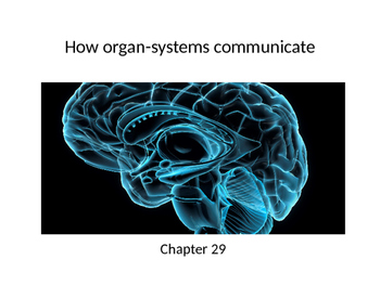 Biology - Organ Systems - The Central Nervous System