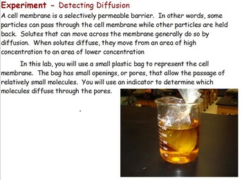 Cell Transport - Osmosis Experiment; Diffusion Experiment