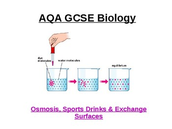 Biology - Osmosis, sports drinks & exchange surfaces