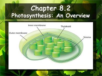 Biology - Photosynthesis (8.2 Photosynthesis An Overview P