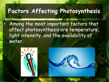 Biology - Photosynthesis 8.3 Process of Photosynthesis Pt 2 PPT & Guided Notes)