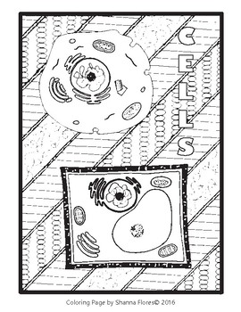Biology: Plant and Animal Cell Zen Coloring Page