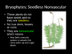 Biology! Plants: Complete Overview