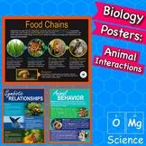 Food Chains, Symbiosis, & Animal Behavior Posters